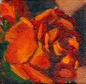 Small painting of a close up of a red plastic rose.