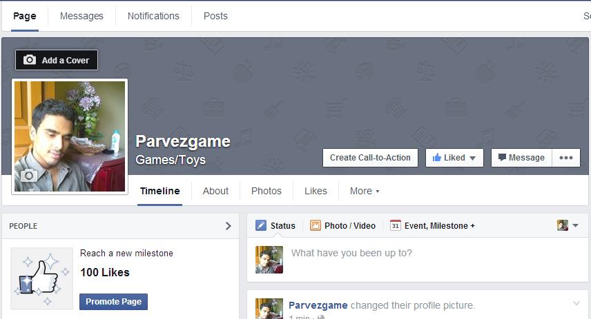 facebook like or fan page