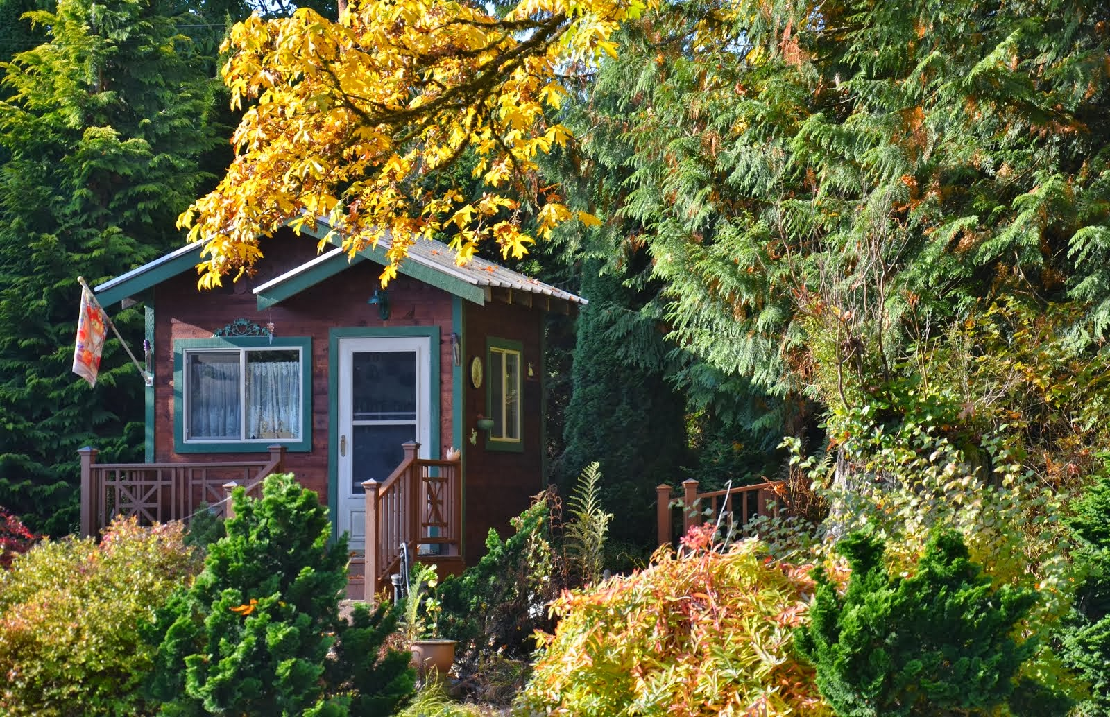 Cottage - Fall