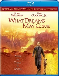 What Dreams May Come 1998 720p Esub BlyRay  Dual Audio English Hindi GOPISAHI