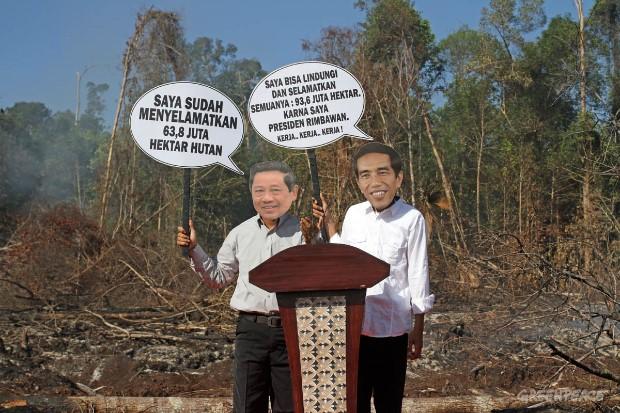 Greenpeace : Presiden Jokowi Gagal Mengatasi Deforestasi dan Melindungi Gambut