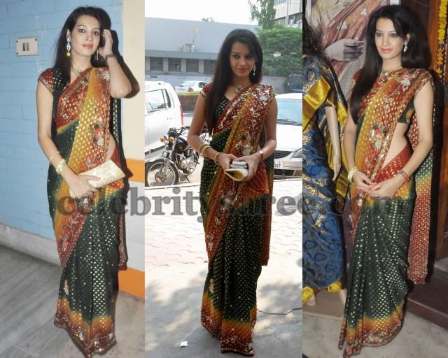 Diksha Panth Bandhini Saree