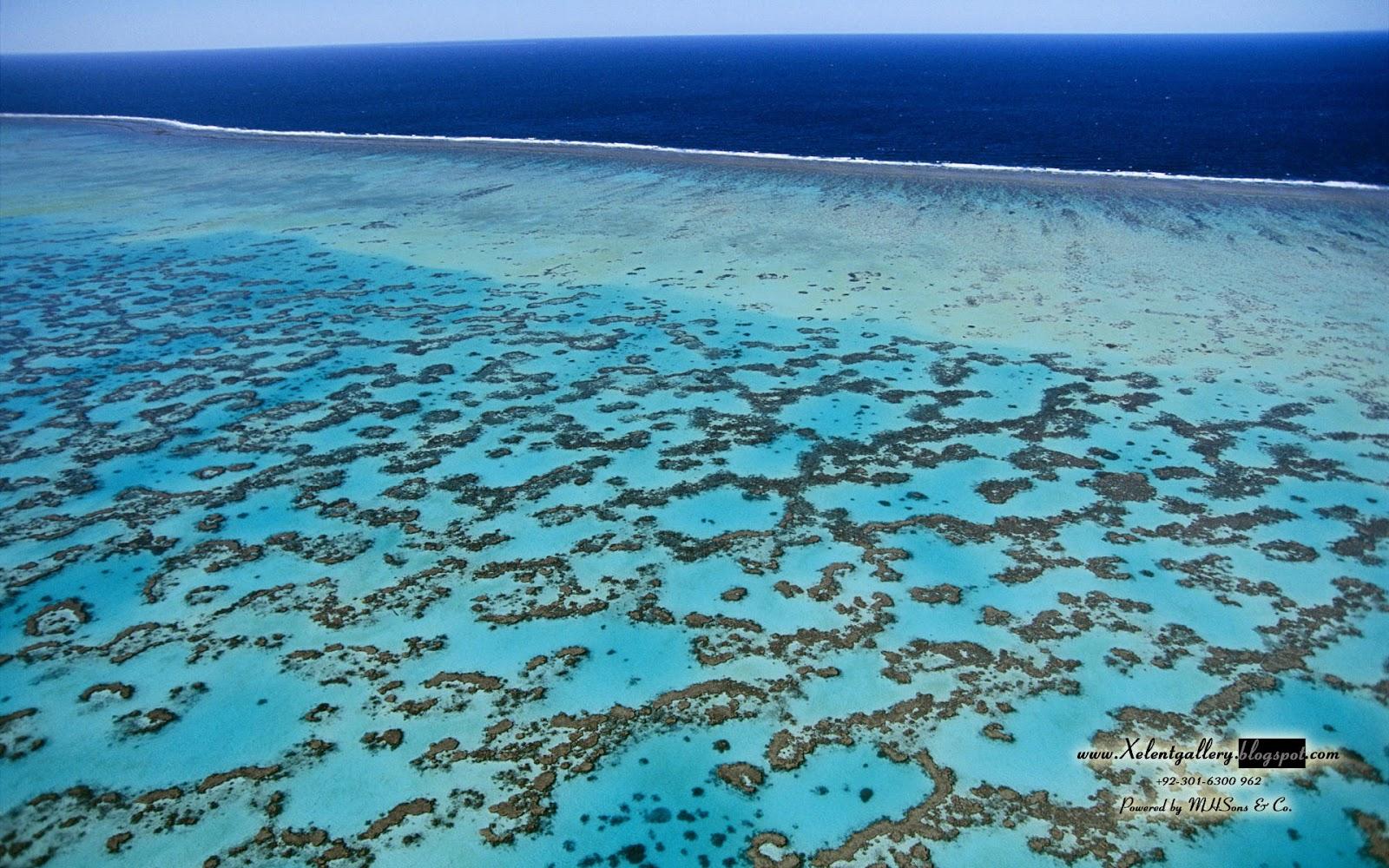http://3.bp.blogspot.com/-48BnUfEl4kA/T99PWsoJuZI/AAAAAAAABxQ/DUbae1c-fAk/s1600/Amazing+Island+Wallpapers+%252832%2529.JPG