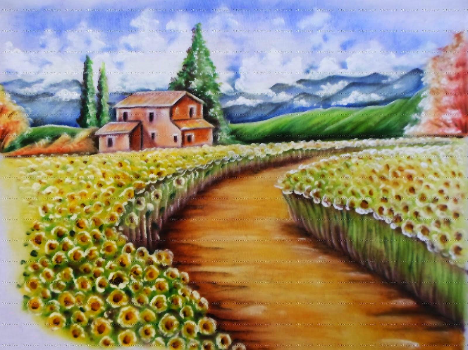 Plantação de Girassol