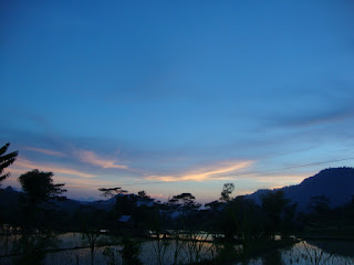 View persawahan di Bali pada senja hari