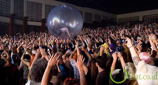 Bola Hamster di Konser The Flaming Lips