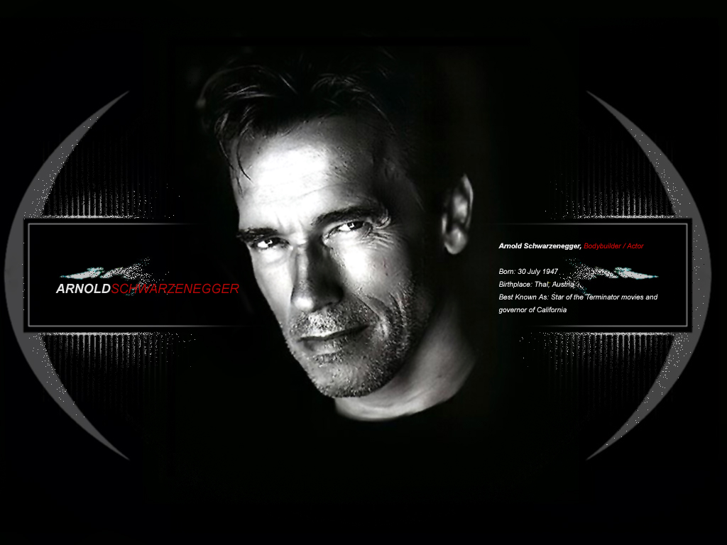 Latest Hollywood Gallery Arnold Schwarzenegger Wallpaper