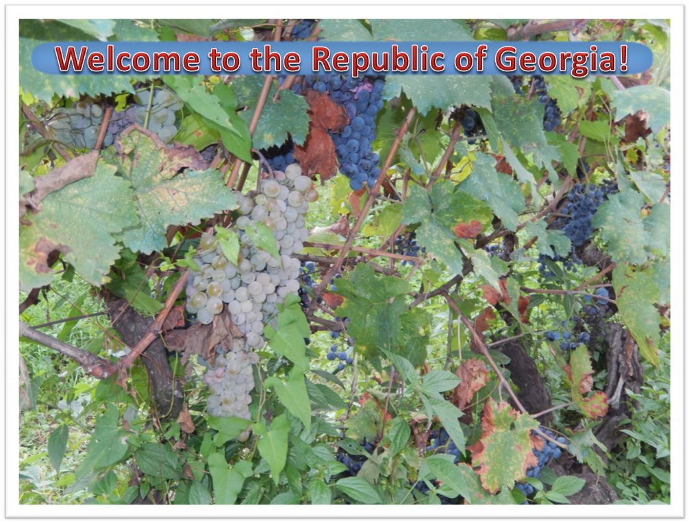 Welcome to the Republic of Georgia!
