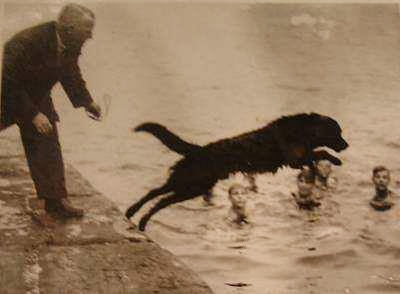 Swansea Jack was a famous dog who rescued 27 people from the docks and riverbanks of Swansea, Wales