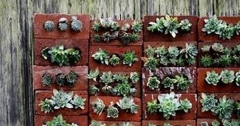 Jardines verticales con ladrillos reciclados Jardines verticales baratos
