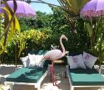 Escape Flamingo Beach