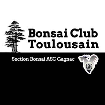 Bonsai Club Toulousain