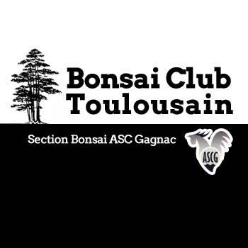 Bonsai Club Toulousain