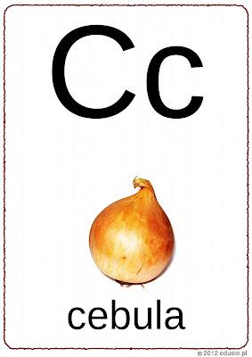 alfabet na ścianę do wydrukowania - cebula