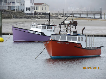 Purple and Red Boat