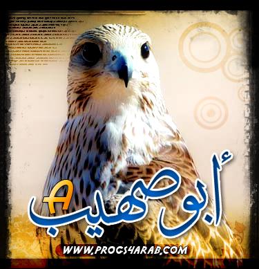 صورة ABOUSOHAYB الشخصية