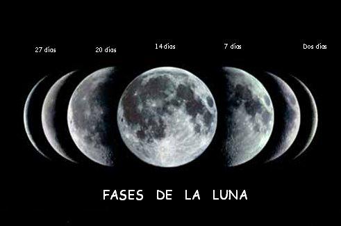 El term metro zodiacal luna nueva para las relaciones humanas for Estamos en menguante o creciente
