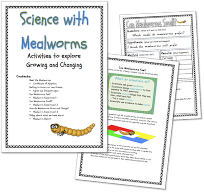 the learning curve science with mealworms. Black Bedroom Furniture Sets. Home Design Ideas