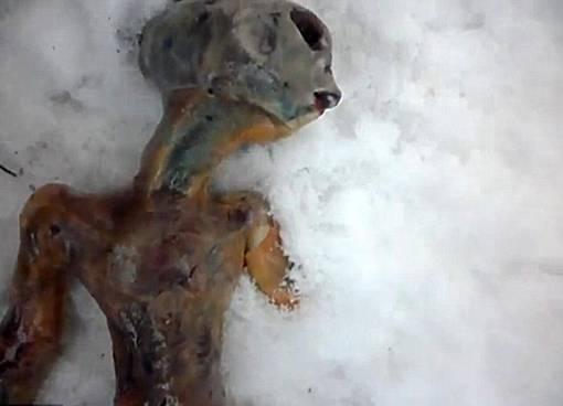 the facemash post - Bangkai Alien Narsis Ditemukan Dua Pejalan Kaki di Siberia
