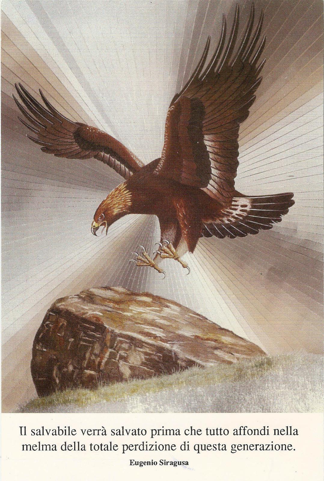 Aquila Eugenio Siragusa