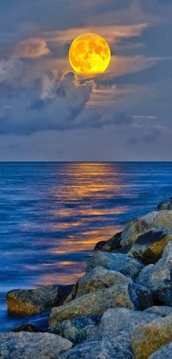 Mar de Amores