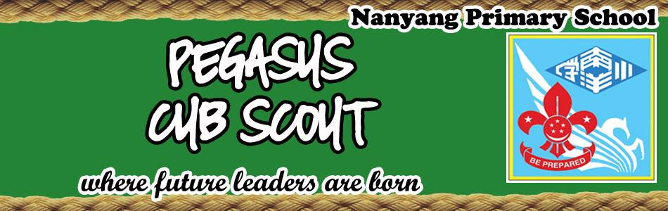 Nanyang Pegasus Cub Scout