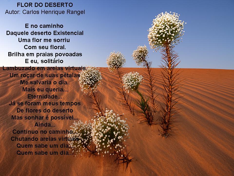 Flor Do Deserto Poemas Luso Poemas