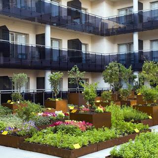 urbanismo ecológico, huertos urbanos