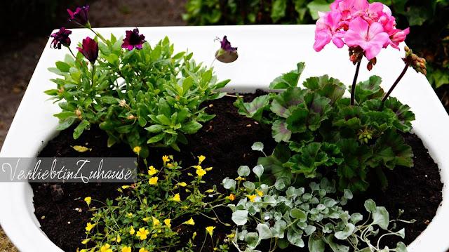 """Bepflanztes Waschbecken anstelle eines Blumentopfes aus """"Ideen und Inspirationen für altes Badezimmer Inventar"""""""