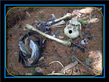 Warga dan Polisi temukan lokasi tulang belulang korban mutilasi