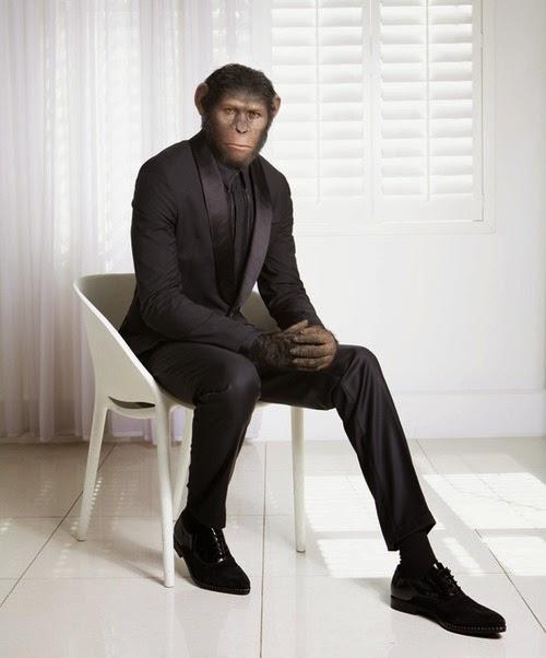Reglas de estilo, trajes, estilo, Suits and Shirts, sastrería,
