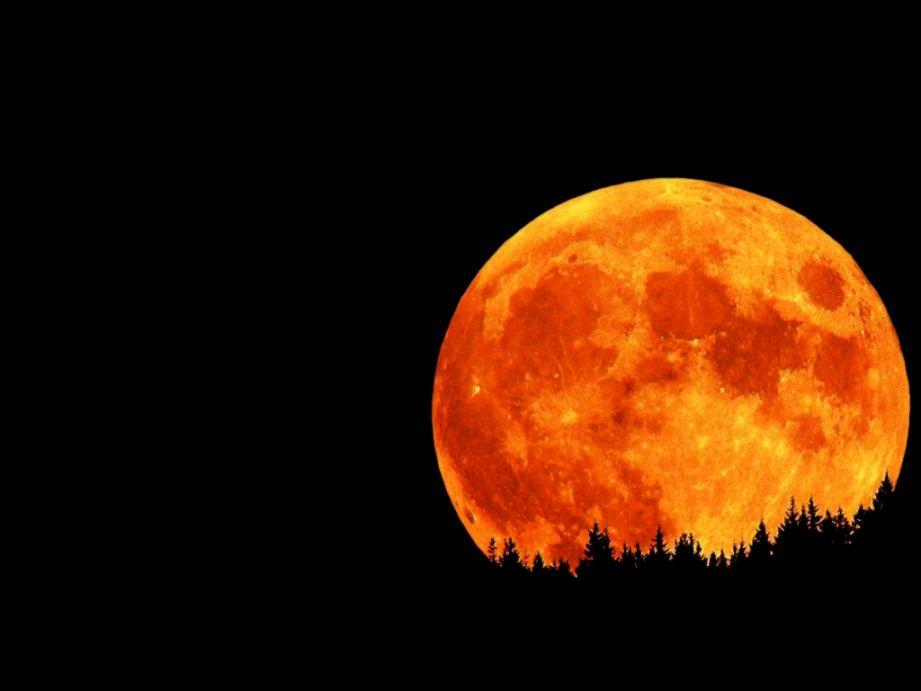 Red Moon 3D Wallpaper Hd