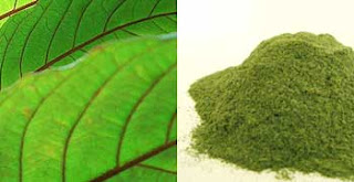 How To Use Dried Kratom Leaves