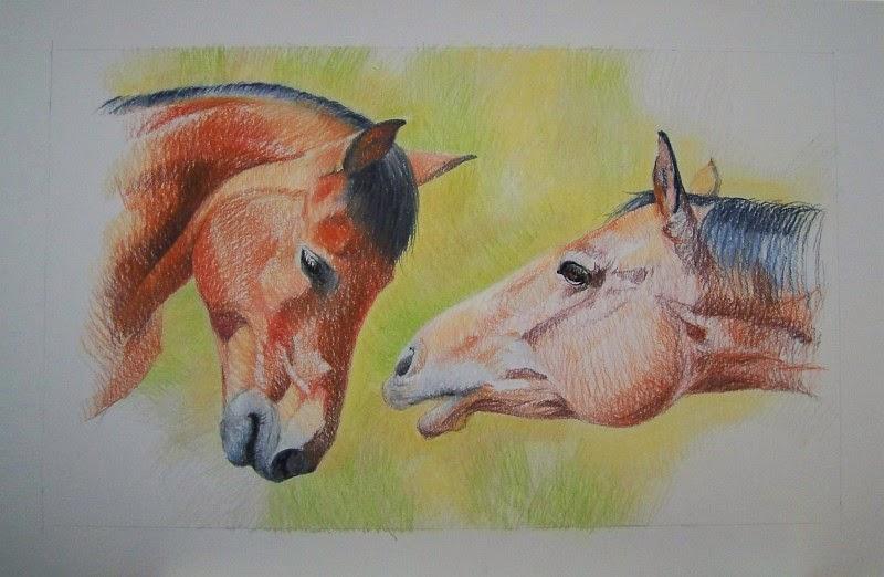 Pferde, Portraitzeichnung