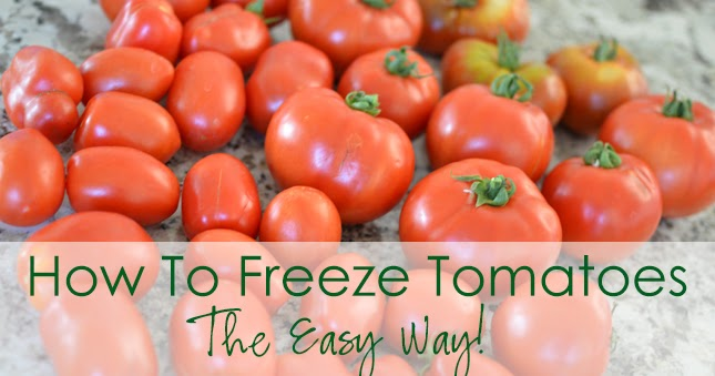 33 Shades Of Green How To Freeze Tomatoes The Easy Way
