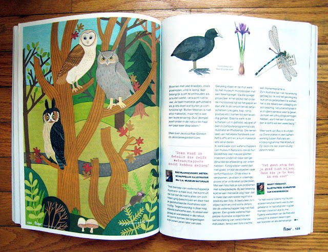 magazine article about owls