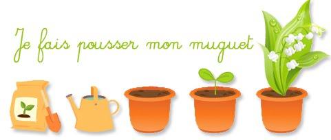 Gelicaso le muguet - Ou planter le muguet ...
