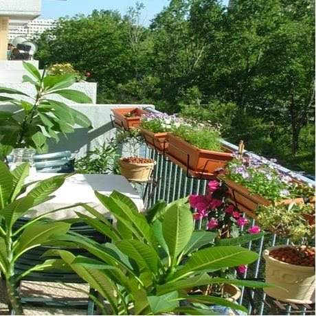 flower pots in the railing | Outdoor Furniture Design