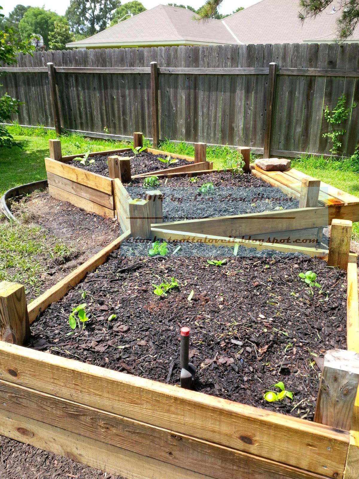 http://3.bp.blogspot.com/-4Eg70Btetls/U54SLdetjAI/AAAAAAAADsk/ej4yv1qMHGU/s1600/GARDEN_making+raised+gardens+4x4,+May+31,+2014+(54)(1).jpg.jpg.jpg