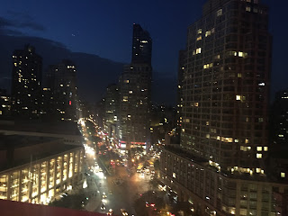Rooftop View of the Empire Hotel in New York