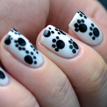 Pet Paws