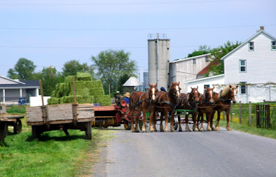 a wagon full of hay pulled by a team of horses