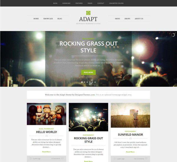Adapt WordPress theme for pro bloggers