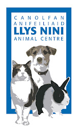 Back to Llys Nini Cats