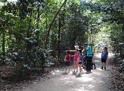 wild shores of singapore: Naked at Chek Jawa again!