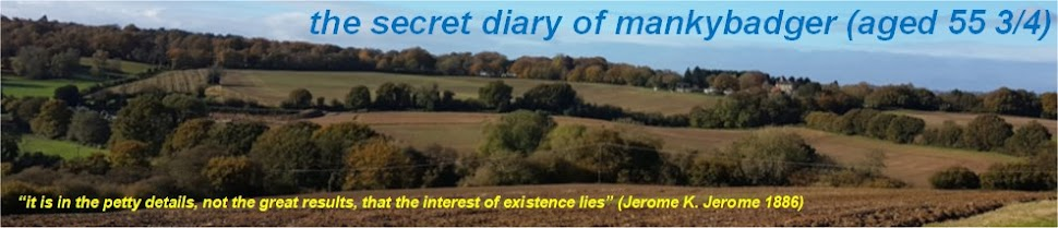 The Secret Diary of Manky Badger