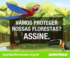VAMOS PROTEGER NOSSAS FLORESTAS