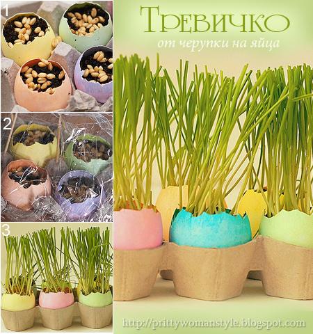 Как да отгледаме трева от семена в черупки от яйца