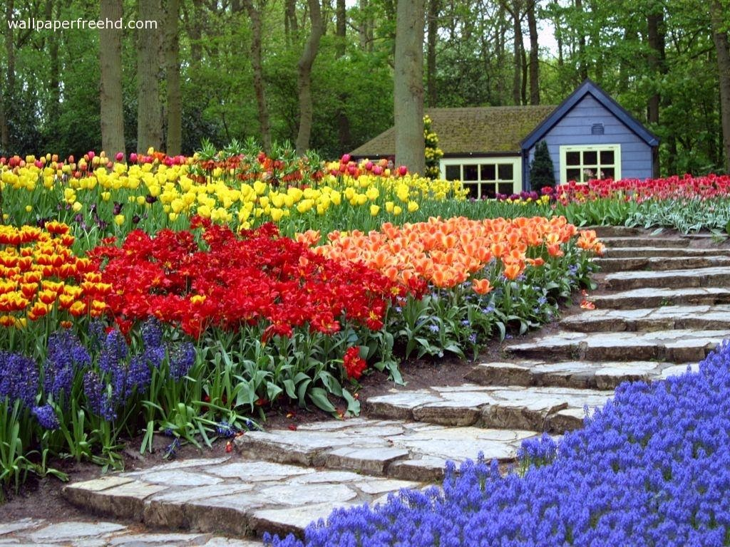 Garden Wallpaper Free Download Pic Gallery