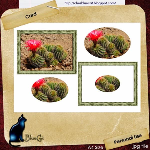 http://3.bp.blogspot.com/-4Gi2KWlX18w/UvFRPVtvVHI/AAAAAAAAEmQ/T7szrfyL40o/s1600/BlueCat_CactusCardpv.jpg